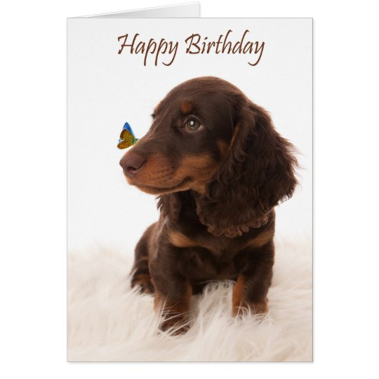 Birthday card dog with butterfly on nose kaart