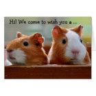Birthday Card: Two Guinea Pigs Kaart