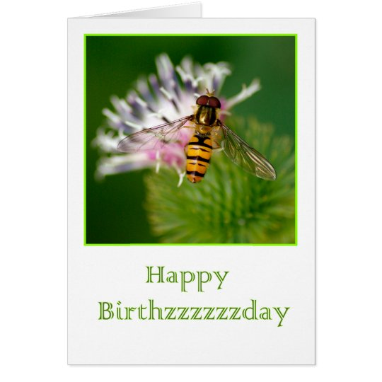 Birthday card with wasp on a thistle flower briefkaarten 0