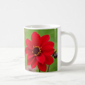 Bischop van Dahlia Llandaff Koffiemok