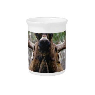 bizarre stierenAmerikaanse elanden Pitcher