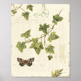 Bladeren en een Vlinder Poster