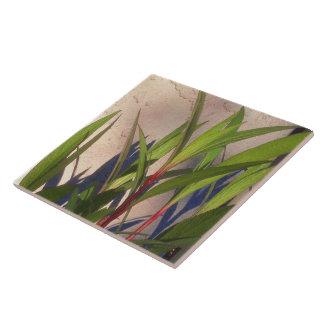 Bladeren en Schaduwen Keramisch Tegeltje