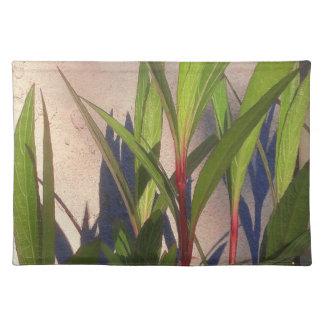 Bladeren en Schaduwen Placemat