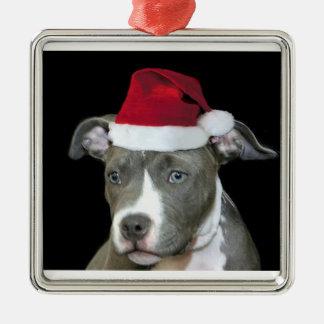 Blauw pitbullpuppy van Kerstmis Zilverkleurig Vierkant Ornament