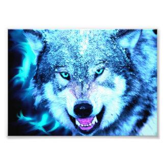 Blauw wolfsgezicht foto kunst