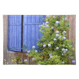 Blauwe blinden en bloemen onderleggers