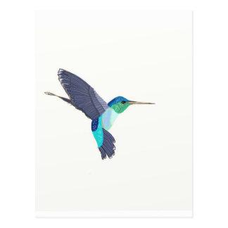 Blauwe en Groene Zoemende Vogel Briefkaart