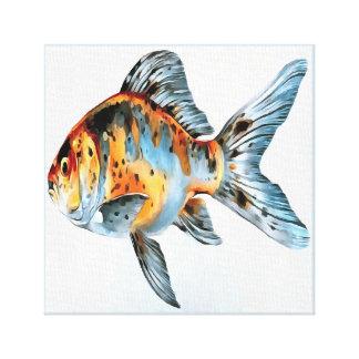 Blauwe en Oranje Goudvis Shubunkin Canvas Afdruk