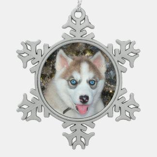 Blauwe eyed Siberische Schor Kerstmis Tin Sneeuwvlok Ornament