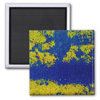 Blauwe Gouden Magneet I