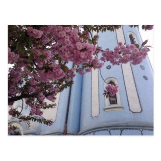 Blauwe Kerk + Bloesem Briefkaart
