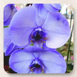 Blauwe Orchideeën Onderzetter