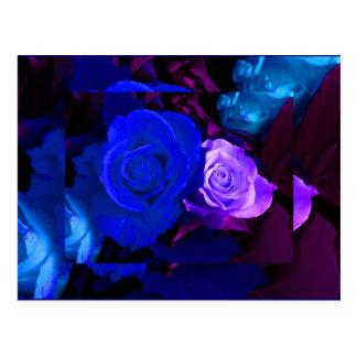 Blauwe Paars nam toe Briefkaart