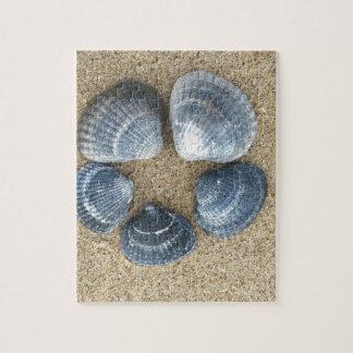 Blauwe shells foto puzzels
