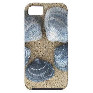 Blauwe shells tough iPhone 5 hoesje