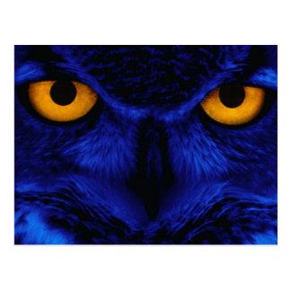 Blauwe Uil Briefkaart