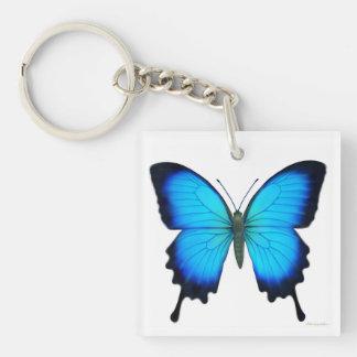 Blauwe Ulysses Vlinder Keychain Sleutelhanger