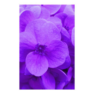 Blauwe Violette Hydrangea hortensia Briefpapier