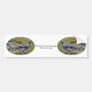 Blauwe Vlaamse gaai op Graniet Outcropping met Mos Bumpersticker