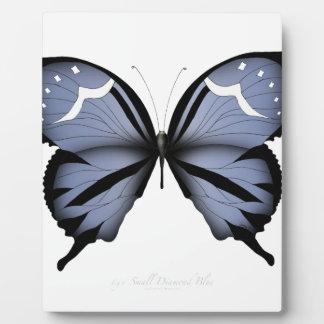 Blauwe Vlinder 6 het Kleine Blauw van de Diamant Fotoplaat