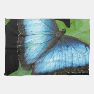 Blauwe Vlinder Morpho Theedoek
