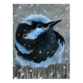 Blauwe vogel in sneeuwBRIEFKAART Briefkaart