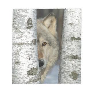 blocnote met pic van grijze wolf in berkbomen