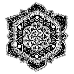 Bloemen Mandala Posters En Afdrukken Zazzlenl