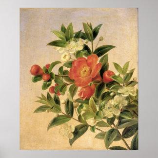 Bloemen, 1835 poster
