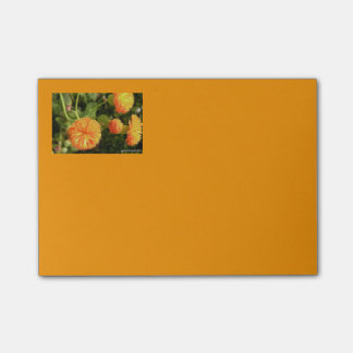 Bloemen 4x3 Post-its Post-it® Notes