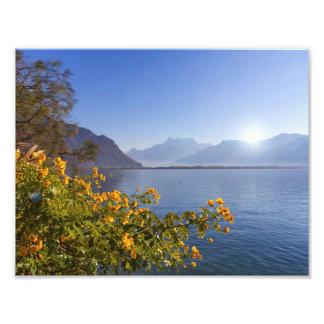 Bloemen bij het meer van Genève, Montreux, Foto Afdruk