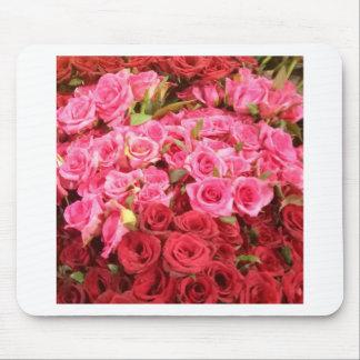 Bloemen in de Filippijnen, de roze en rode rozen Muismat