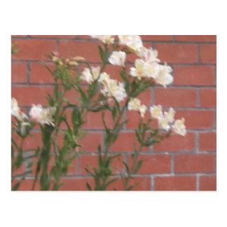 Bloemen op Baksteen Briefkaart