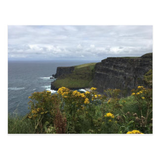 Bloemen op de Klippen van Moher Briefkaart