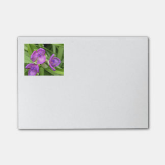 Bloemen Paarse Post-its Post-it® Notes