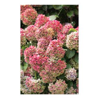Bloemen van een Franse hydrangea hortensia Briefpapier