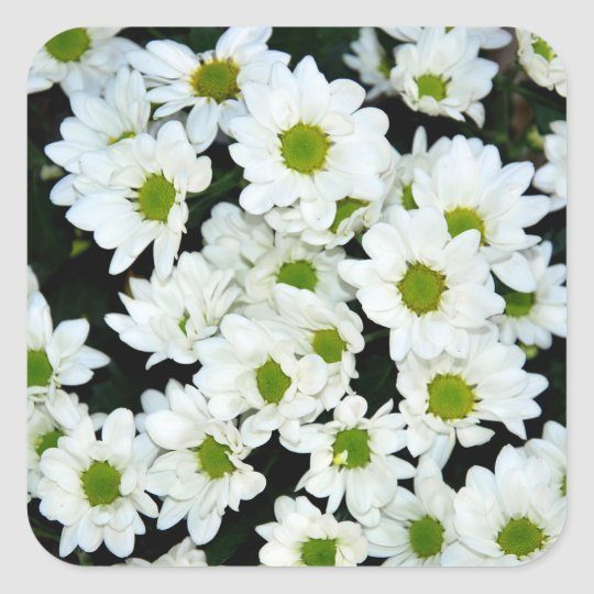 Bloemen Vierkante Sticker
