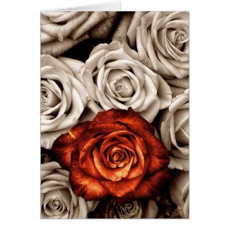 Boeket van wit en Rood rozen Leeg Wenskaart