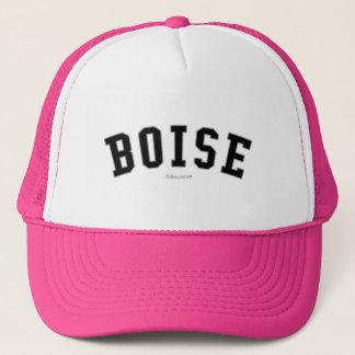 Boise Trucker Pet