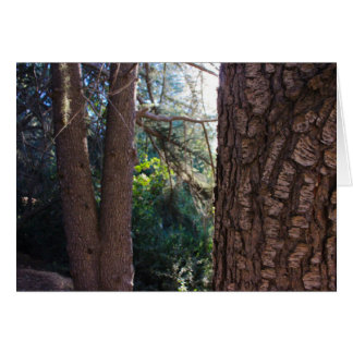 Bomen 3 van het Park van de Canion van Franklin Kaart