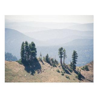 Bomen die Lassen overzien | Briefkaart