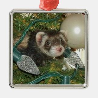 Bonnie in het Ornament van Kerstmis van de Boom