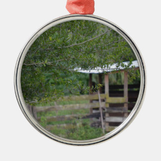 boom en oude schuurFlorida foto Zilverkleurig Rond Ornament