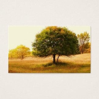 boom van het leven visitekaartjes