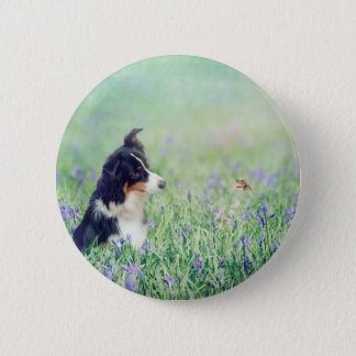 Border collie en Kolibrie Ronde Button 5,7 Cm