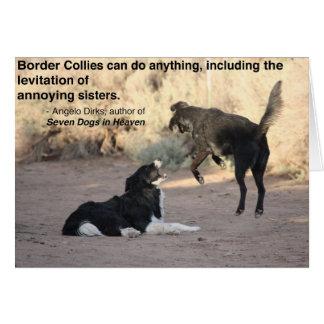 Border collie levitatie ondergaat Zwart Briefkaarten 0