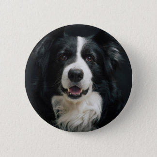 border collie ronde button 5,7 cm