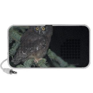 Boreale Uil op Tak iPod Speaker