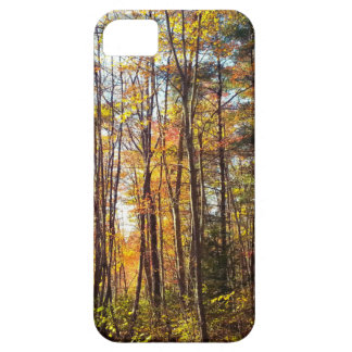 Bos het van Newhampshire van de Herfst Barely There iPhone 5 Hoesje
